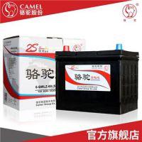 供应3S免维护骆驼电池起动铅酸电池汽车电瓶