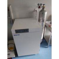 BIOBASE气套式二氧化碳培养箱价格QP-160