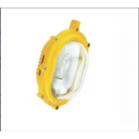 CBFC8120内场防爆强光泛光,高效节能,旭升照明,上海亚明