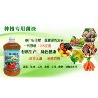 果树种植有机肥发酵剂和防虫液厂家联系方式灵宝安徽商丘
