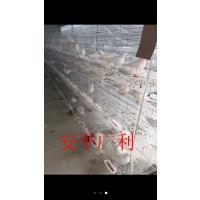 厂家直销鸟笼兔笼大群笼小群笼 加粗鸽子笼兔子笼 鹦鹉笼 相思鸟笼子