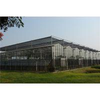 江苏无锡595玻璃温室大棚阳光房专业承建厂家
