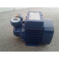 南京pedrollo水泵销售