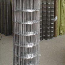镀锌铁丝网 焊接网规格 防裂网厂家