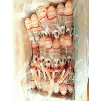 海龙虾是什么 龙虾批发多少钱一斤