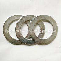 厂家生产 大孔平垫片 优质镀锌垫片 非标平垫 规格齐全 可订做加工