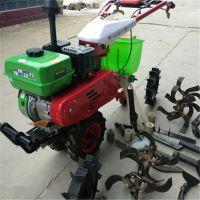 土地耕整机 绿茶园松土旋耕设备 山地专用旋耕机