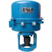 361RSC-30 361RXC-30 电动执行器 电动阀门