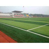 山东五人制人造草坪足球场