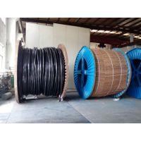供应齐鲁牌铜芯聚乙烯绝缘聚乙烯多芯齐鲁电缆 VVR-0.6/1kv 3*2.5