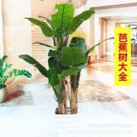 大型仿真芭蕉树热带仿真植物仿真树装饰绿植假花假树盆栽仿真花
