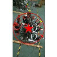 沧玖zw32-12生产厂家高压断路器