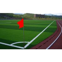 供应人造草坪 草坪安装 草坪铺设 球场施工 厂方直销 包工包料