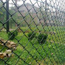 体育场护栏围网 安全防护围栏网 篮球场外墙护栏