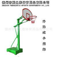 源头工厂可定制馨赢牌幼儿篮球架升降式移动式 中学小学小篮球架