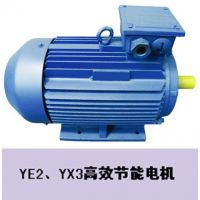 YE2、YX3高效节能电机