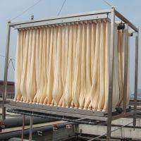 广东洁林供应GL-MBR膜生物反应器 MBR膜组件 帘式膜