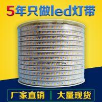 led灯带rgb5050高压灯带3014防水5730霓虹软灯条2835双排三排220V