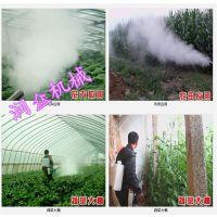 不生锈耐用的弥雾机 润众 植保农用打药机制作