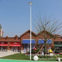 中山篮球场电灯杆一般多高合适 大量6米8米10米球场灯杆批发