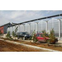 宜昌 纹络型玻璃生态餐厅温室大棚 承接全国业务