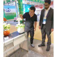 现代智能蔬菜花卉种植蛋阳台种菜全智能蔬菜花卉种植蛋种植蛋科普教育可移动式植物净化器