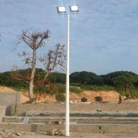 湖南足球场灯杆 厂家生产镀锌篮球场灯柱 雅浩球场灯架