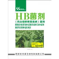 云南省烟草种植防治烟草根黑腐病-鹤壁市禾盛生物厂家直销13939282663