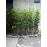 厂家直销仿真竹子 盆景竹子 园林景观 田园景观 可按要求订做