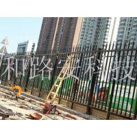 惠州供应铁质护栏/马路隔离专用护栏/铁网护栏多少钱一米