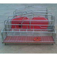 昌茂母猪双体产床生产厂家,养猪设备