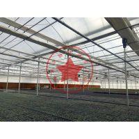 拱形薄膜连栋温室大棚建造厂家—青州瀚洋温室
