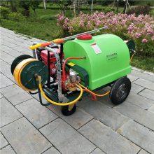 工厂生产地面除尘喷洒机压力可调打药机农用推车式喷雾机旭阳