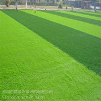 广州混合型型塑胶跑道 深圳塑胶跑道铺装材料生产厂家 善跑