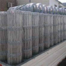 1*2米方孔不锈钢网片 景观304不锈钢网片工厂 建筑网片