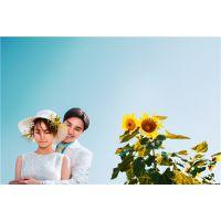 安阳时尚芭迪 安阳韩式婚纱 安阳婚纱照