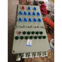 BXD52-6/30/K125防爆动力配电箱