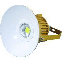 LED防爆灯BZD120-20W防爆免维护LED照明灯(ⅡC) 20W