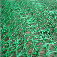 厂家直销绿化三维网垫 土工网垫厂家 生态绿化网