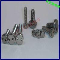 双孔平头螺丝钉 不锈钢两小孔槽螺丝 生产加工定做 M6810121618