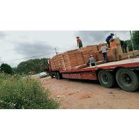 鲁安常年生产各种规格的桉木单板