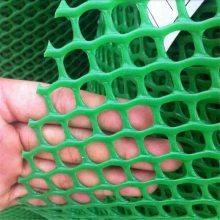 塑料蚕簇方孔网 肉鸡养殖网 塑料平网厂家