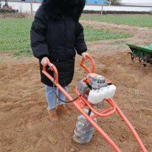 蔬菜大棚打坑机 启航汽油手提式植树钻坑机 果园施肥挖坑机厂家