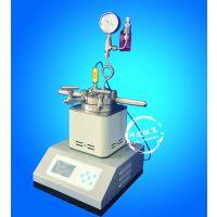 25ML-500ML 小型反应器 实验、科研用微型磁力反应釜 加氢釜