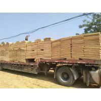 广西鲁安生产各种规格的桉木单板