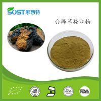 白桦茸提取物 西安索西特生物 白桦茸多糖 厂家供应 植物提取物价格