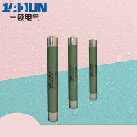 高压限流熔断器XRNP-12/10/0.5/1/2/3.15A 熔管熔芯保护高分断 ?15.00