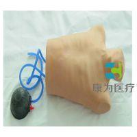 """""""康为医疗""""高级气胸穿刺仿真模型KDF/CK815,气胸穿刺,气胸处理,成人穿刺"""