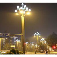 2017新款玉兰灯 来图来样定制玉兰灯 玉兰灯生产厂家 15米玉兰灯
