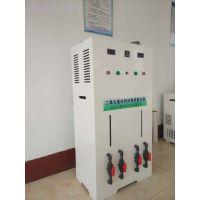 潼南县电解法二氧化氯发生器超高品质超低价格